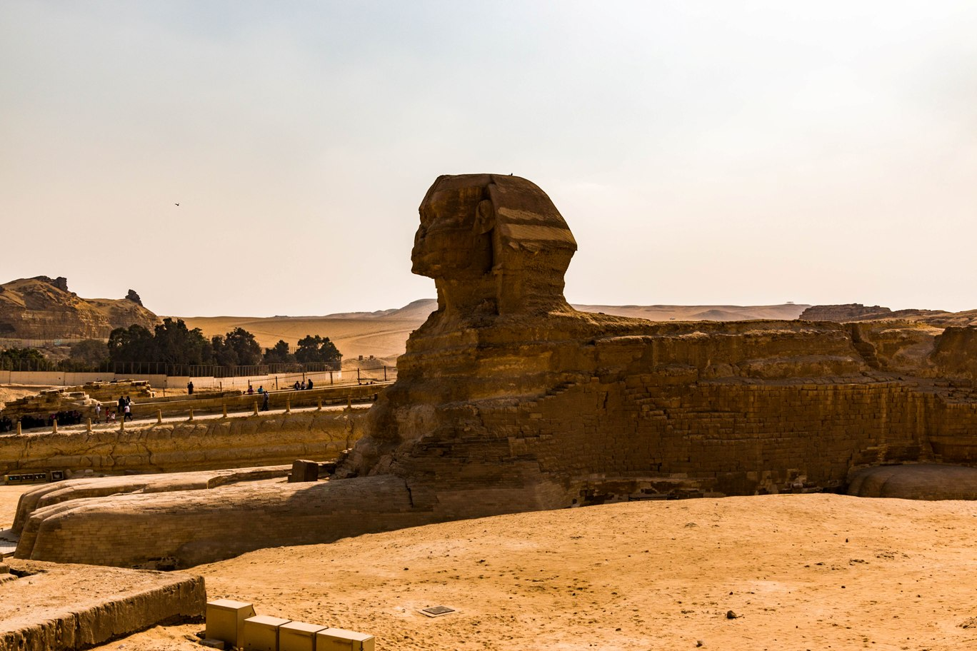 vedere din laterala asupra sfinxului in cairo egipt.